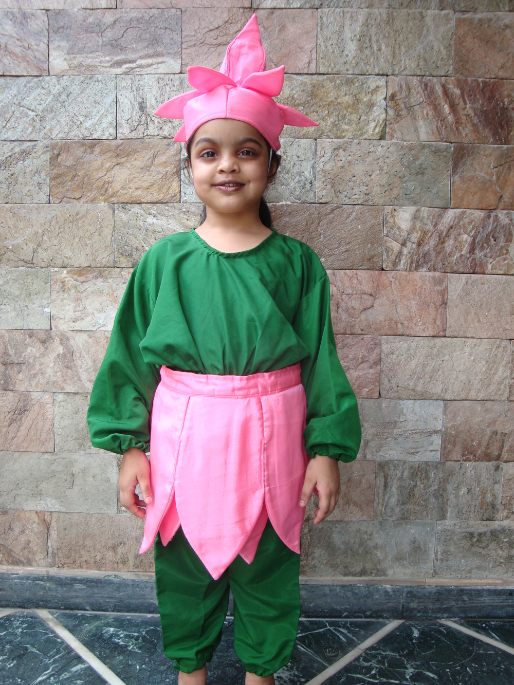 Fancy Dress Competition Dresses Online India